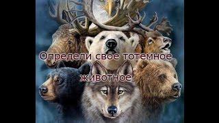 Тотемные животные и союзники