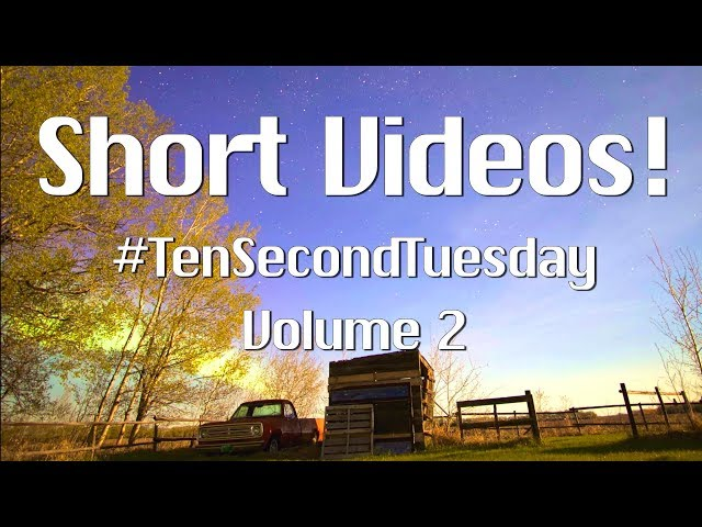 Short Video Collection! #TenSecondTuesday Volume 2