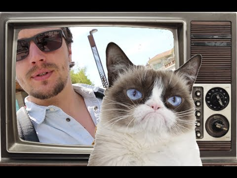 CAT CAFE IN NICE, FRANCE !! VLOG #03