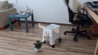 IKEA HACK Bolman ALG by Michael Kononsky