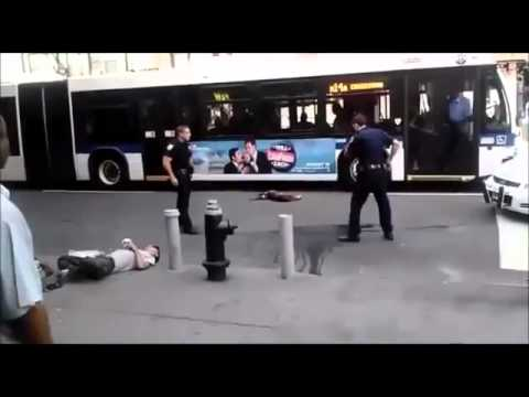 Stupid New York (NYPD) Police Officers overreact and kill Pitbull on  City Street!