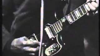 Muddy waters - Train fare Home Blues - live 1968
