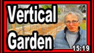 Vertical Garden - Wisconsin Garden Video Blog 575
