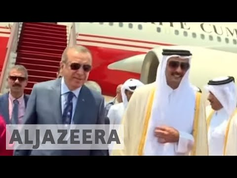 Erdogan visits Qatar to help resolve Gulf crisis
