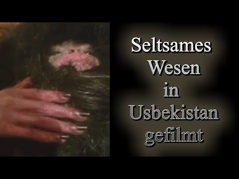 Seltsames Wesen in Usbekistan gefilmt