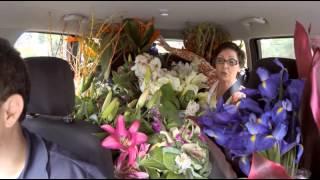 Goodyear National Treasures -- Flowers