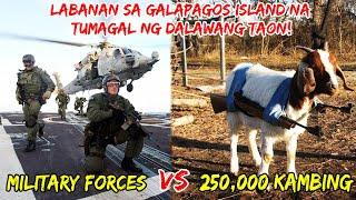 250,000 Na Mga Kambing Laban sa Mga Sundalo    Labanan na Tumagal ng 2 Taon