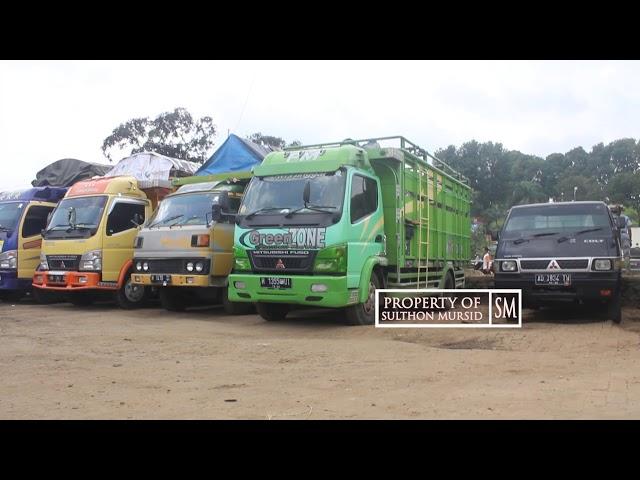 Truk Mania 2018 - Kerenya,,!!!!! Truk Sapi Pasar Hewan Ambarawa