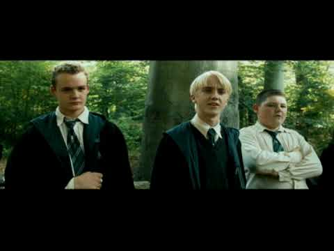 Harry Potter Draco Malfoy & Voldemort singing Pigfarts