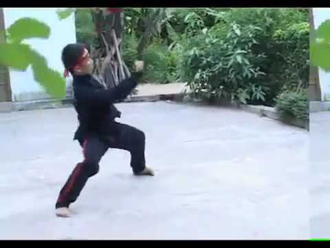 Binh Dinh Kung Fu Traditional Part  2