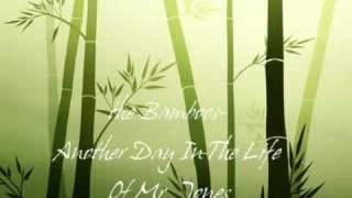 The Bamboos- Another Day In The Life Of Mr Jones