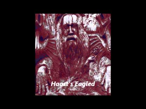 Haast's Eagled - Cruithne Tide