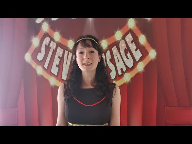 Family entertainer & birthday party magician Steve Sausage what people say