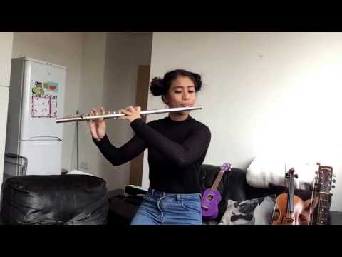 Across the Stars Love Theme from Star Wars Episode III  Flute   ThiyaTang