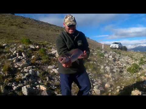 NEW ZEALAND TWIZEL FISHING TRIP