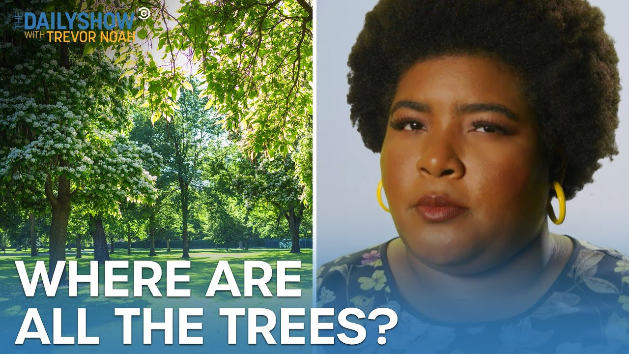 Download Dul-Sayin' - Why Low-Income Neighborhoods Have Fewer Trees | The Daily Show