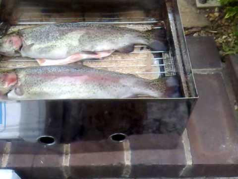 How to smoke fish with a fish smoker youtube for How to smoke fish in a smoker