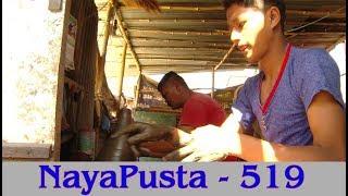 दियोको उज्यालो, तिहारको रमाइलो | NayaPusta - 519