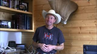 Shed Antler Display Ideas - Mark Kayser