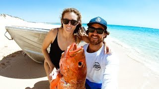 HOW TO TELL THE AGE OF A FISH Mangrove Jack Catch And Cook - Ep 128