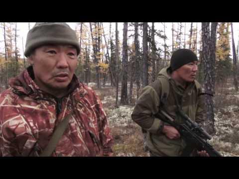 Охота в Алданском
