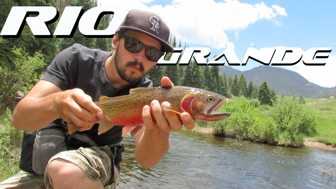Fly fishing south fork rio grande river youtube for Rio fly fishing