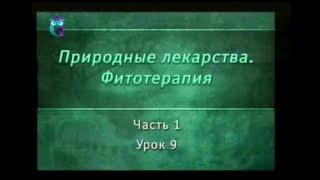 Фитотерапия. Урок 1.9. Лекарственные растения, действующие на нервную систему
