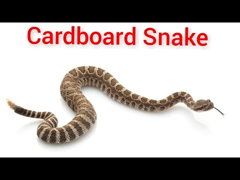 DIY | How To Make A Rattle Snake From Cardboard| Kids Toy | Cardboard Art ANd Craft Project Idea