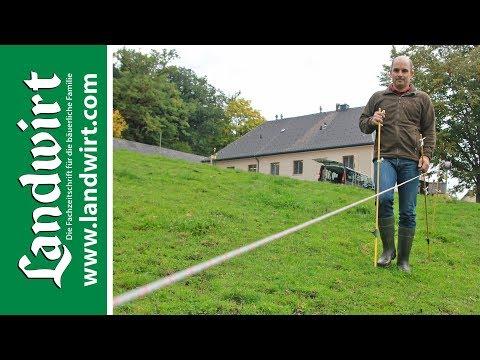 Weidezaun bauen   landwirt.com