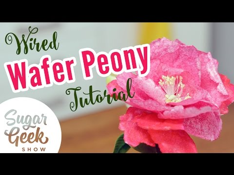 Wired Wafer Paper Peony
