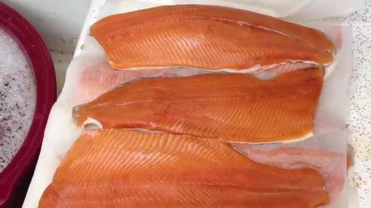 How to Freeze Salmon and other Fish - YouTube