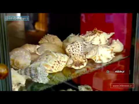 Iran Shell & Scallop handicrafts, Kermanshah province دستسازهاي صدف و گوش ماهي كرمانشاه ايران