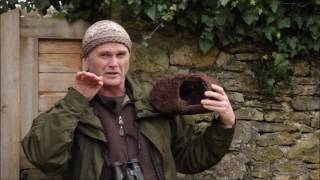 Wildlife World fuglehus til rødhals - flet video