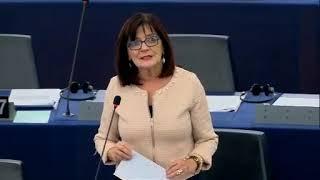 Intervento in aula di Patrizia Toia sulle conclusioni del Consiglio europeo del 17 e 18 ottobre