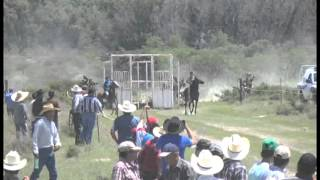 Carreras de San Felipe Guanajuato
