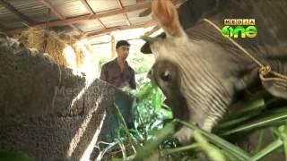 Organic Farming - A Success Story in Kerala