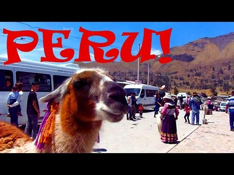 PERU IS AMAZING! Condors, Canyons, Llamas & Hot Springs