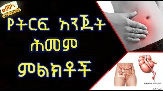 Symptoms  of Appendicitis -  የትርፍ አንጀት ሕመም ምልክቶች
