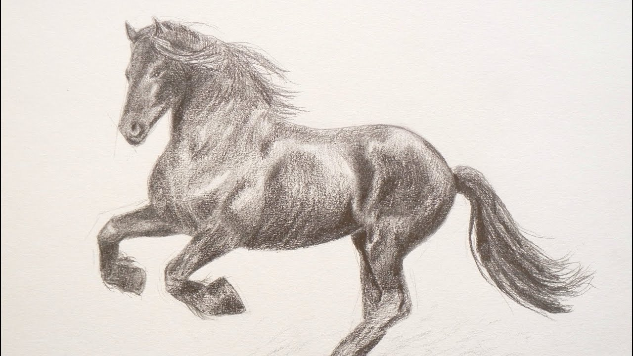 Cmo dibujar un caballo  Arte Divierte  YouTube