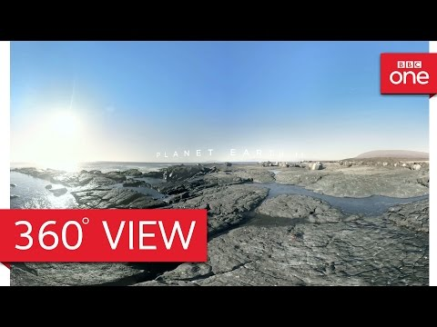 Galapagos Islands in 360° - Planet Earth II: Islands - BBC One