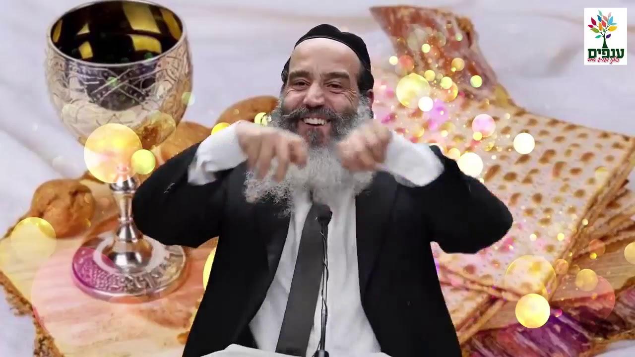 פסח  מעבדות לחירות   הרב יצחק פנגר HD   מצחיק! לא לפספס!