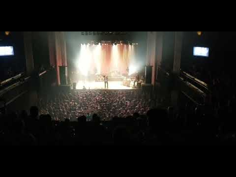 Montreal love affair with The Cat Empire