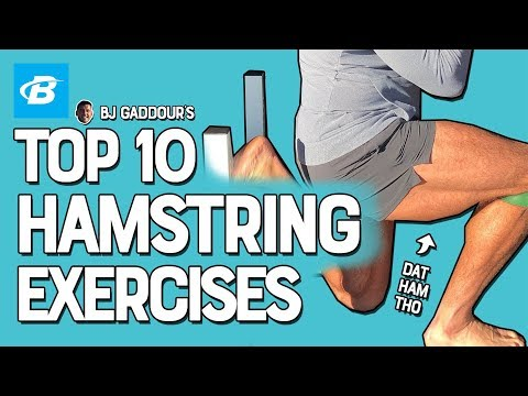 Top 10 Hamstrings Exercises | BJ Gaddour Leg Workouts