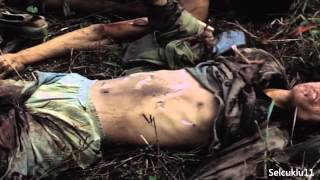 Vietnam War - Combat Footage HD Quality