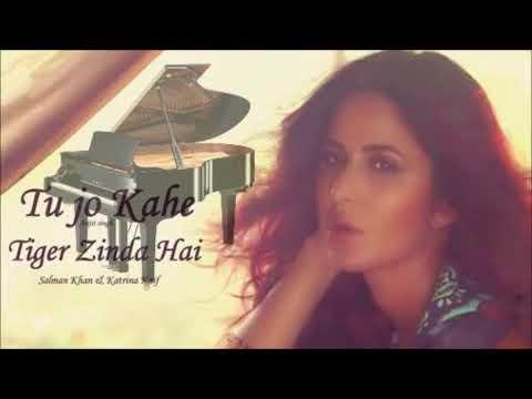Tu Jo Kahe - Piano Instrumental | Tiger Zinda Hai | Salman Khan | Katrina Kaif | Arijit Singh