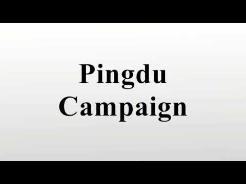 Pingdu Campaign