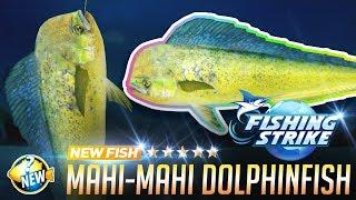 《釣魚大亨 Fishing Strike》 New fish Mahi-mahi dolphin fish ...