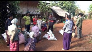 Durga Productions - Mystic Hilltribe Thailand. Coffee Production and Life...