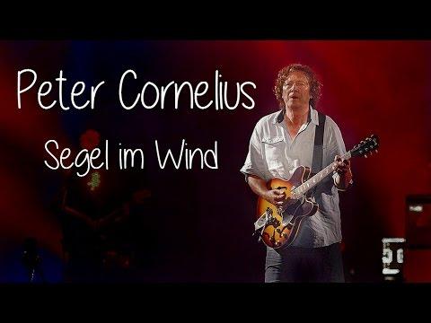 Peter Cornelius - Segel im Wind (Lyrics) | Musik aus Österreich mit Text
