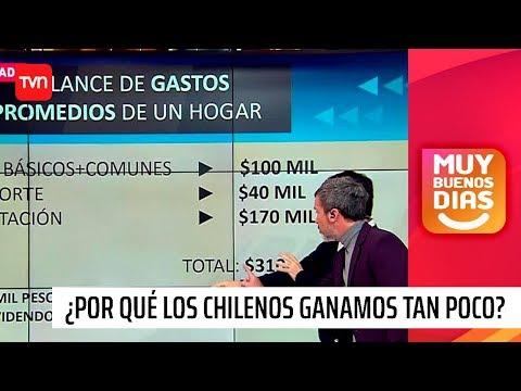 ¿Por Qué El Promedio De Sueldos En Chile Es Tan Bajo? | Muy Buenos Días | Buenos Días A Todos